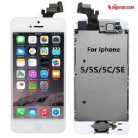 Thay màn hình iPhone 5/5S
